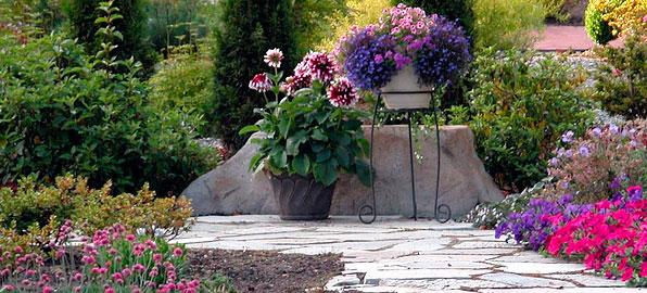 Jardines ibiza particulares for Fotos de jardines particulares
